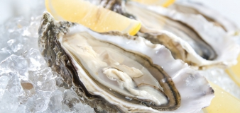 Try our oysters on the spot or take away